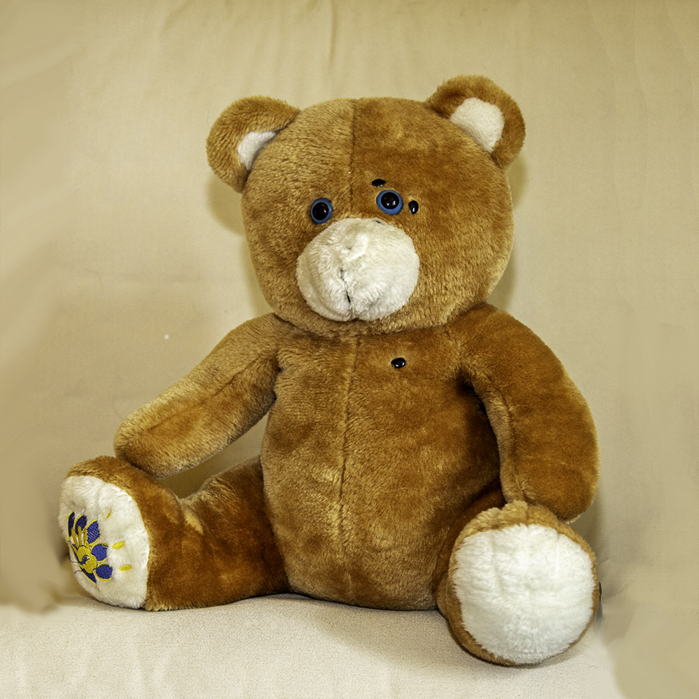 Tappy Teddy - EFT Therapy for Children